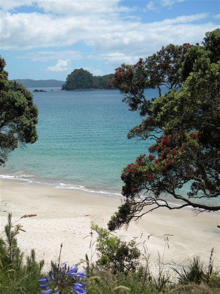 Harhei Beach - Coromandel