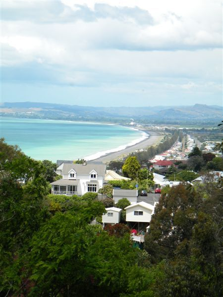View over Napier